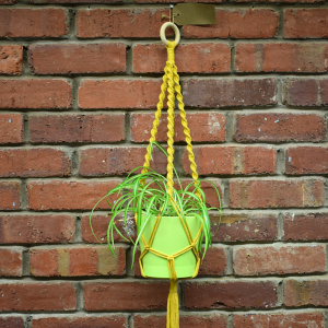 Yellow macrame plant hanger with plant, against a brick wall.